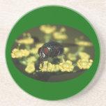 mosca, polen, y flor posavasos para bebidas
