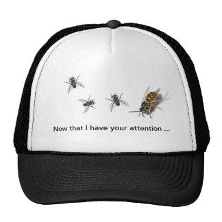 Moscas y abeja de la avispa en el casquillo: Consi Gorra