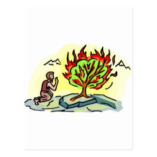 Moses and burning bush Christian artwork Post Card