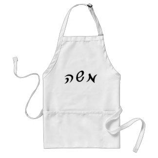 Moshe (Moses) - letras hebreas de la escritura Delantal