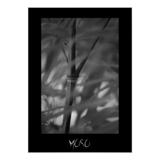 Moso Bamboo Zen Posters