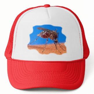 Mosquito Biting hat