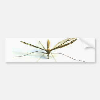 mosquito car bumper sticker