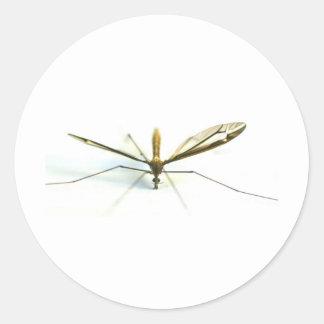 mosquito classic round sticker