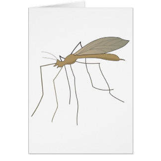 mosquito crane fly card