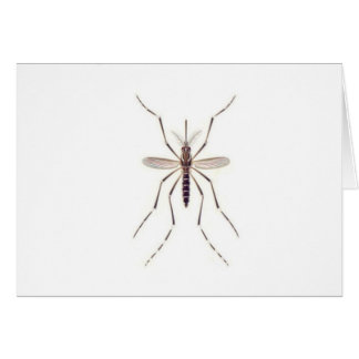 Mosquito  POWER Card