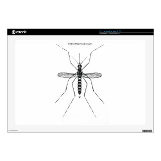 "Mosquito Scientific Nomenclature Illustration NICE Decals For 17"" Laptops"