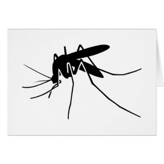 Mosquito Side View Card