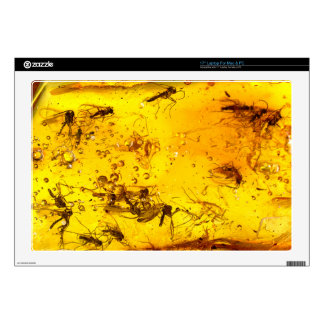 "Mosquitoes fossil amber | decals for 17"" laptops"