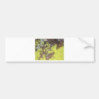 moss #4 bumper sticker