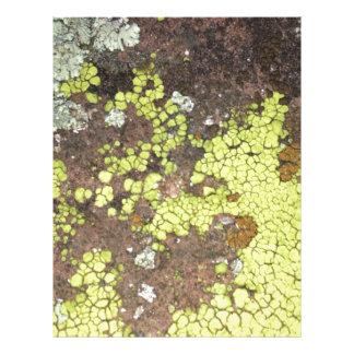 moss #4 letterhead