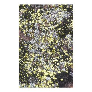 moss #5 stationery