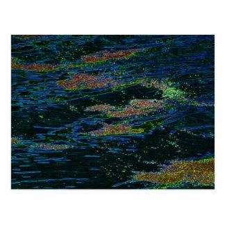Moss Aglow On Water Postcard