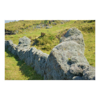 Moss And Lichen Covered Dry Stone Wall Poster