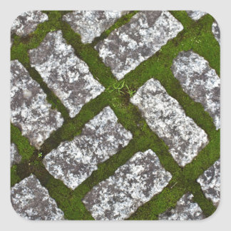 Moss and Stones Square Sticker