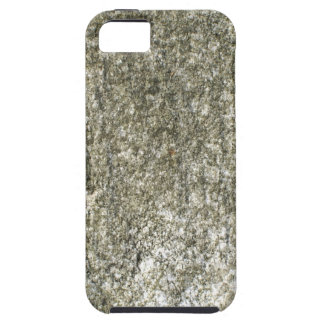 Moss covered cement.jpg iPhone 5 cases