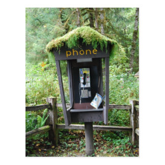 Moss covered phone booth postcard