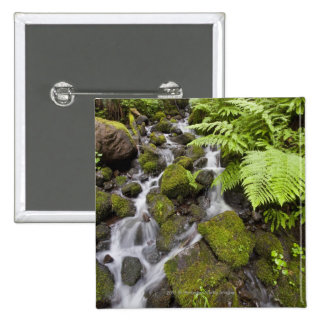 Moss covered rocks with blurred water and ferns 2 inch square button