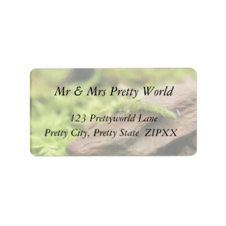 Moss Covered Stones Address Label