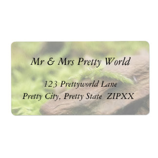 Moss Covered Stones Shipping Label