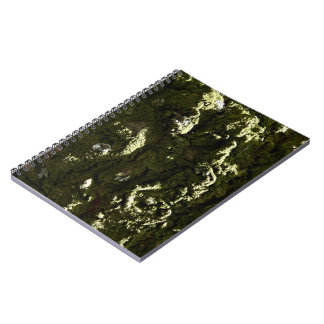 Moss covered Trunk Notebook