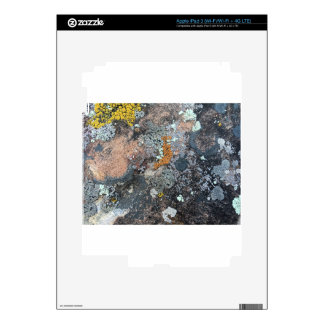 Moss Decal For iPad 3