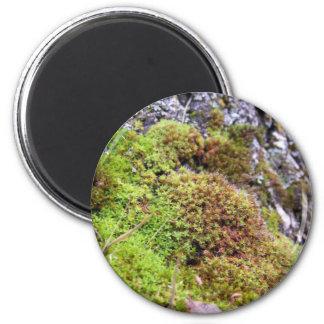 Moss & Granite Magnet