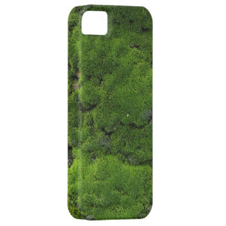 Moss Green iPhone 5 Cases