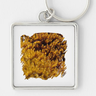 Moss Inspection Silver-Colored Square Keychain