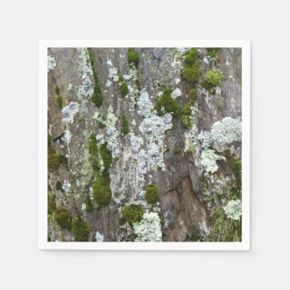 Moss & Lichen Paper Napkin