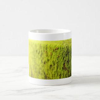 Moss Mug