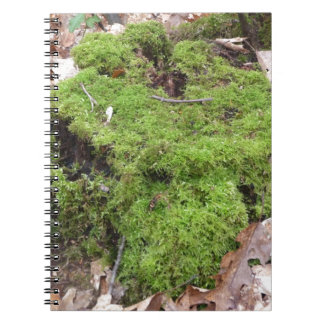 Moss on a Tree trunk Spiral Note Books