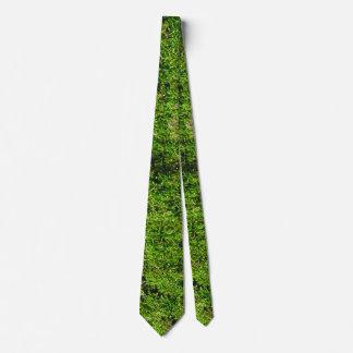 Moss on Dogwood Tree Bark 0291 Tie