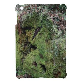 Moss on fallen redwood iPad mini covers