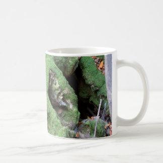 Moss on Redwood Tree Coffee Mug