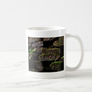 Moss on Rock Wall Classic White Coffee Mug