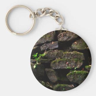 Moss on Rock Wall Keychain
