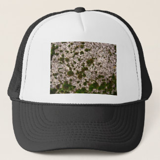 Moss on White Gravel Surface Trucker Hat