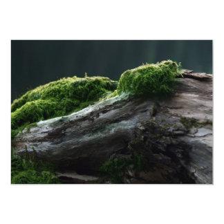 Moss On Wood Card