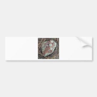 Moss rock lichen bumper sticker