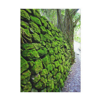 Moss Rock Wall Canvas Print