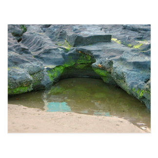 Moss, rocks and puddle greeting card