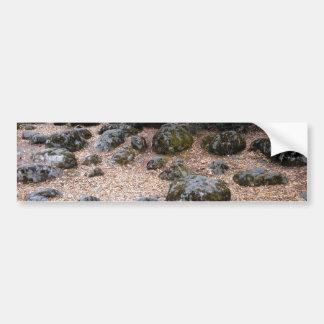 Moss Rocks Car Bumper Sticker