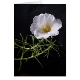 """""""Moss rose"""" card"""