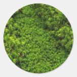 Moss Round Stickers
