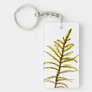 Moss sprout Double-Sided rectangular acrylic keychain