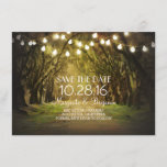 """Moss Tree Path Rustic String Lights Save the Date<br><div class=""""desc"""">Moss trees avenue rustic and romantic string lights save the date invitation</div>"""