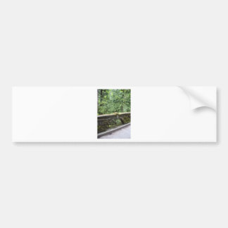 MossBridge052309 Bumper Stickers