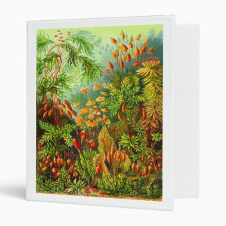 Mosses 3 Ring Binder