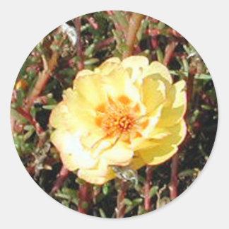 Mosss Rose Classic Round Sticker